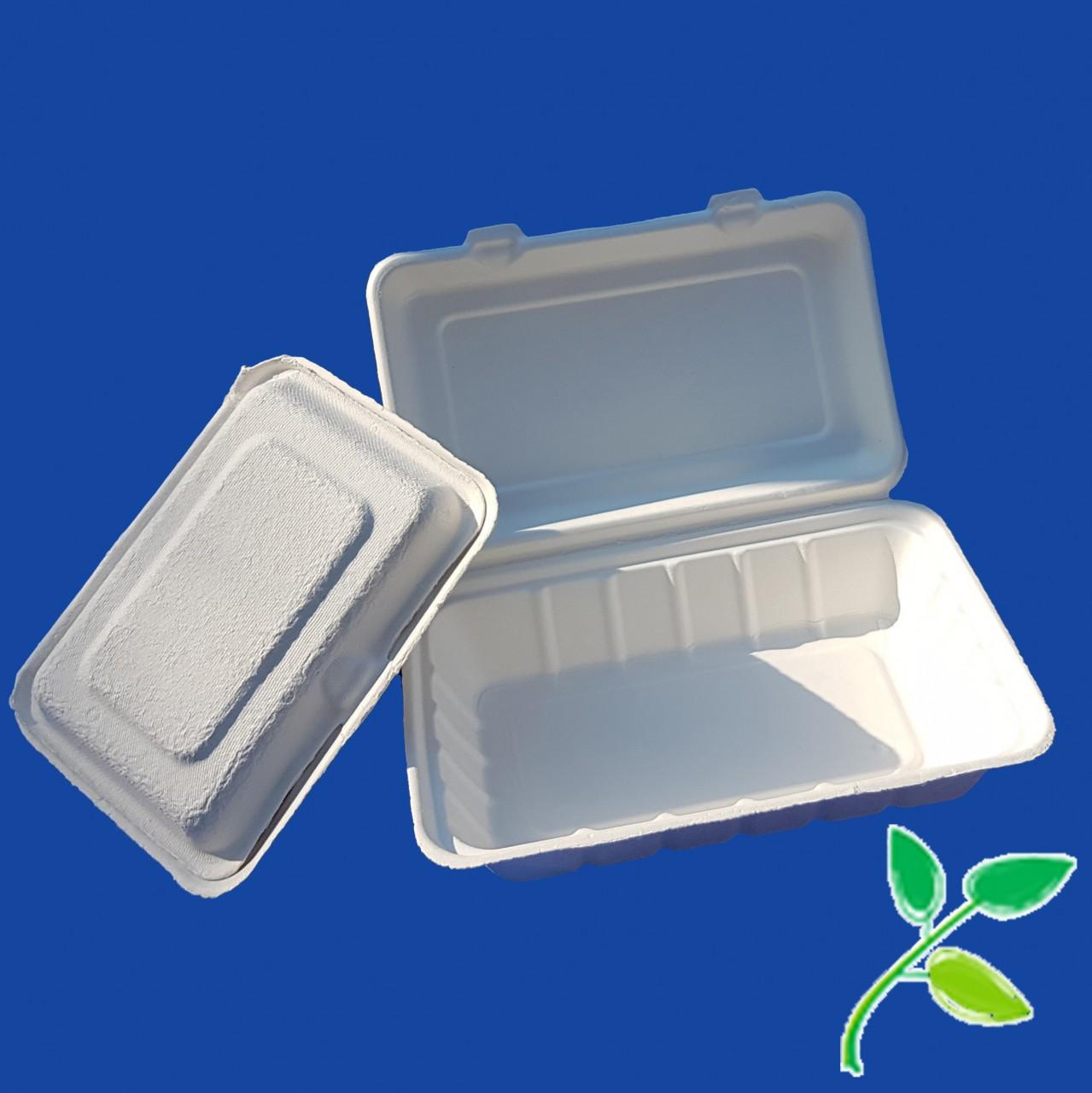 Menue-Schalen |aus Bagasse (kompostierbar)